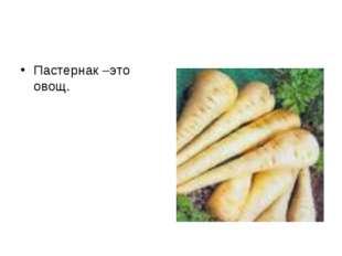 Пастернак –это овощ.