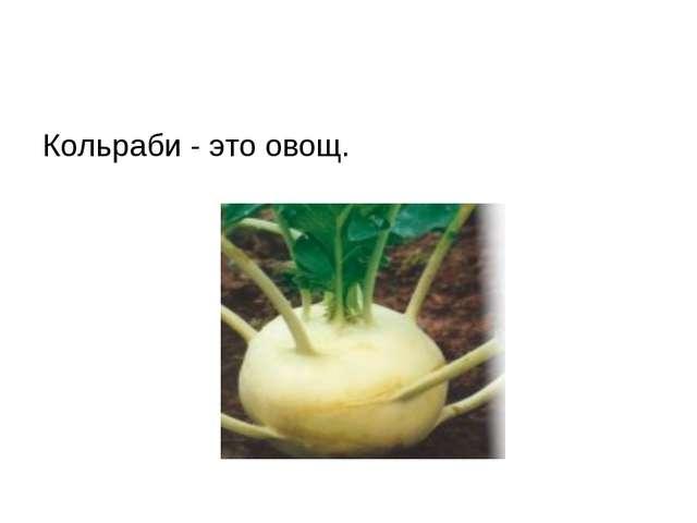 Кольраби - это овощ.