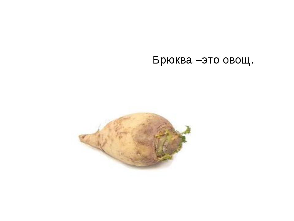 Брюква –это овощ.