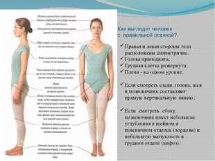 Как выглядит человек с правильной осанкой? Правая и левая стороны тела распол