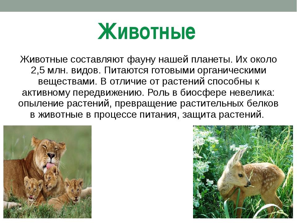 Животные Животные составляют фауну нашей планеты. Их около 2,5 млн. видов. Пи...
