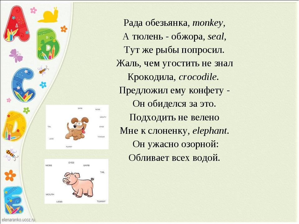 Рада обезьянка, monkey, А тюлень - обжора, seal, Тут же рыбы попросил. Жаль,...