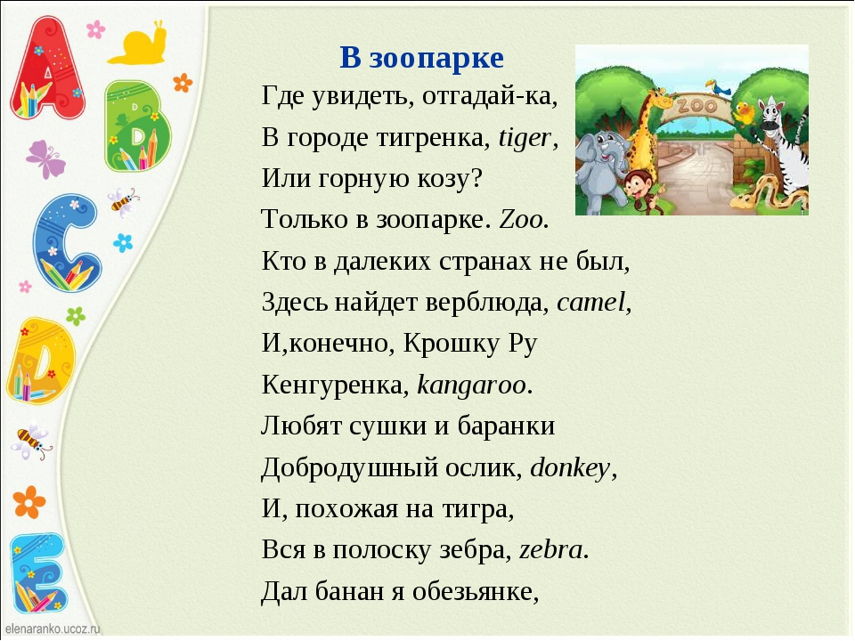 В зоопарке Где увидеть, отгадай-ка, В городе тигренка, tiger, Или горную козу...