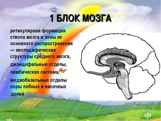 1 БЛОК МОЗГА ретикулярная формация ствола мозга и зоны ее основного распростр...