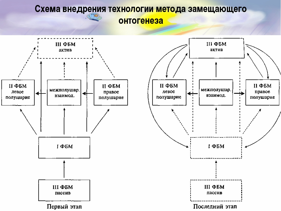 Схема внедрения технологии метода замещающего онтогенеза