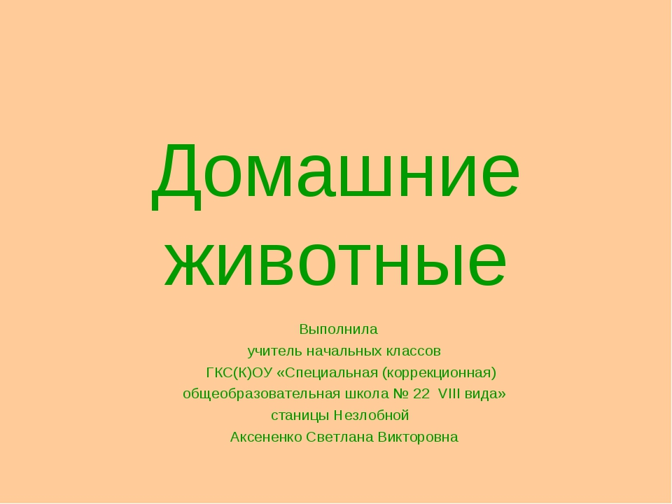 Домашние животные Выполнила учитель начальных классов ГКС(К)ОУ «Специальная (...