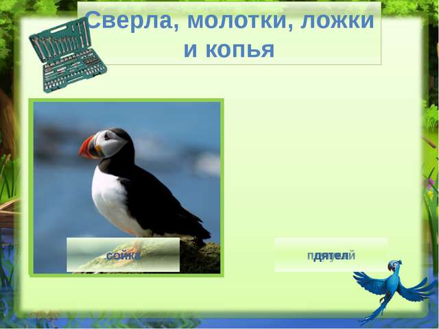 Птица кричит - http://img0.liveinternet.ru/images/attach/c/7/94/287/94287062_...