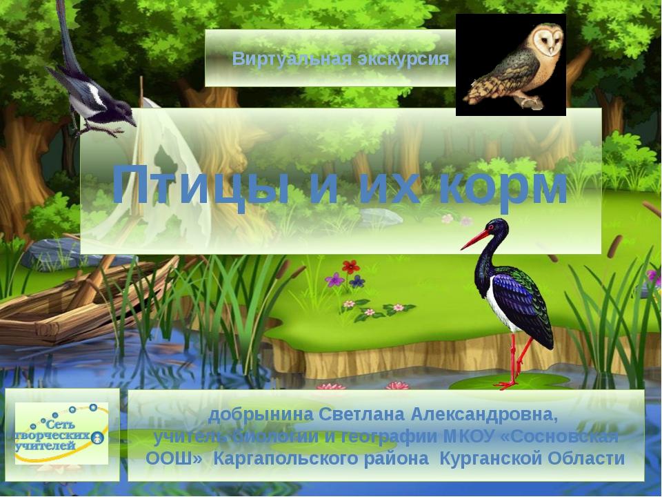 Птицы и их корм добрынина Светлана Александровна, учитель биологии и географи...