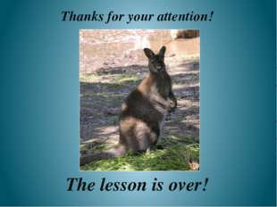 The lesson is over! Thanks for your attention!
