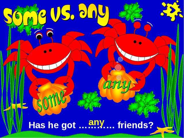 Has he got ………… friends? any