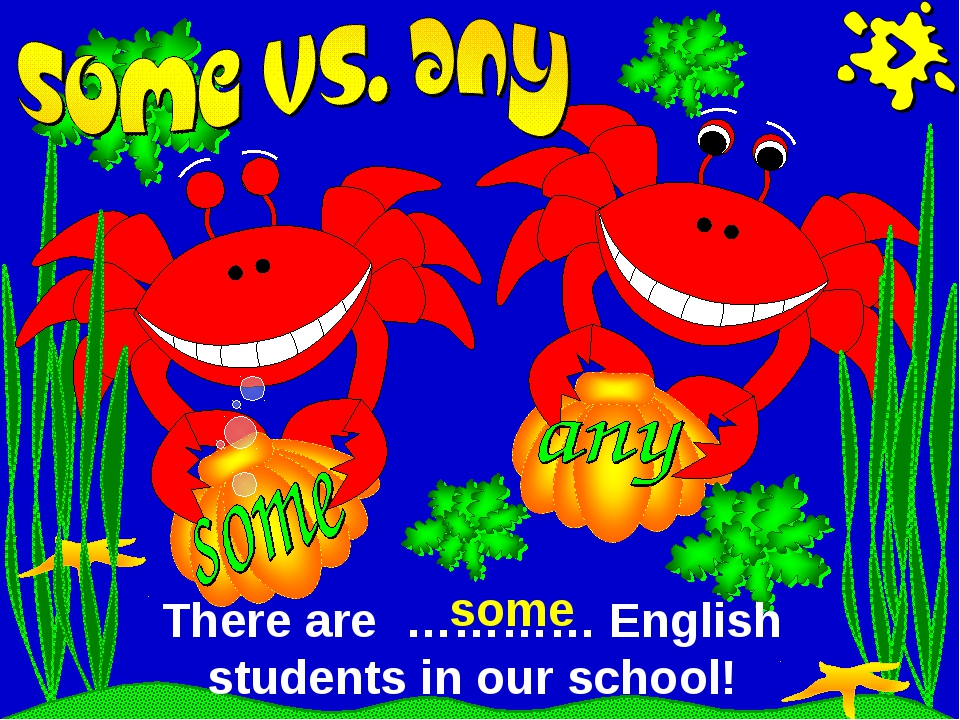 There are ………… English students in our school! some