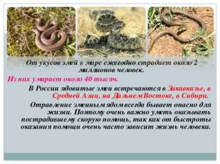 От укусов змей в мире ежегодно страдает около 2 миллионов человек. Из них ум