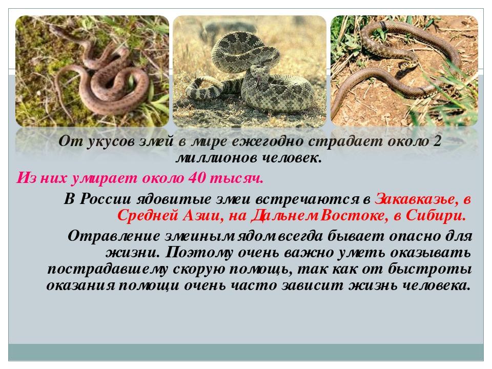 От укусов змей в мире ежегодно страдает около 2 миллионов человек. Из них ум...