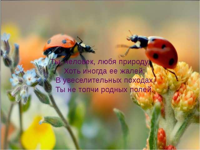 Ты, человек, любя природу, Хоть иногда ее жалей; В увеселительных походах Ты...