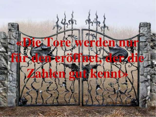 «Die Tore werden nur für den eröffnet, der die Zahlen gut kennt»