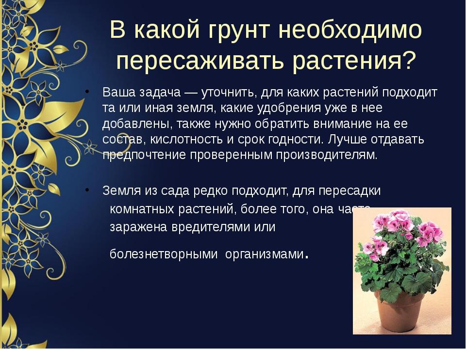 В какой грунт необходимо пересаживать растения? Ваша задача — уточнить, для к...