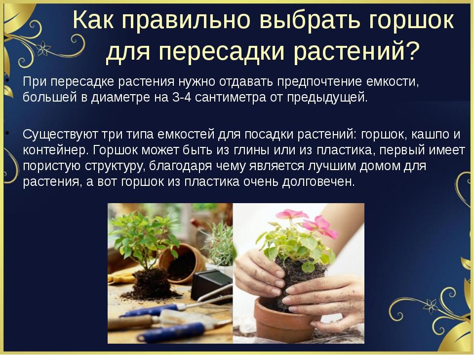 Как правильно выбрать горшок для пересадки растений? При пересадке растения н...