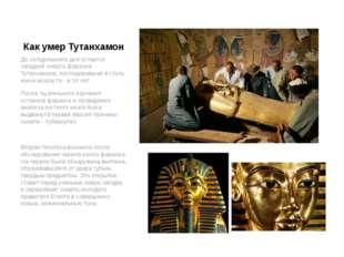 Как умер Тутанхамон До сегодняшнего дня остается загадкой смерть фараона Тута