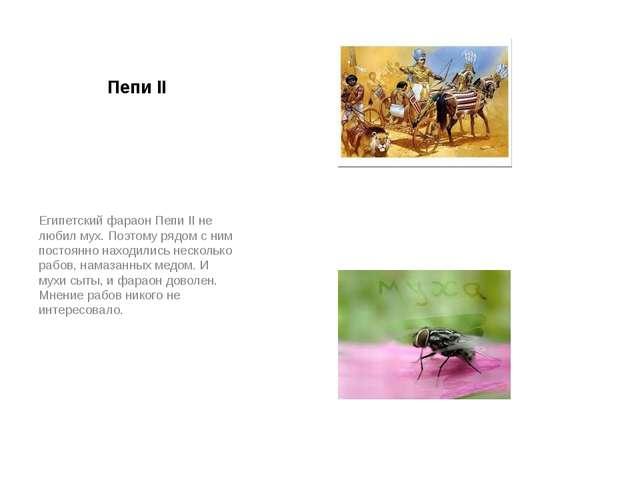 Пепи II Египетский фараон Пепи II не любил мух. Поэтому рядом с ним постоянно...