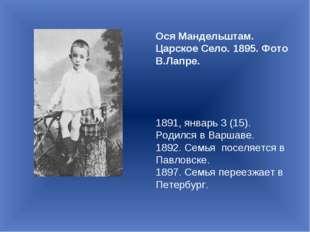 Ося Мандельштам. Царское Село. 1895. Фото В.Лапре. 1891, январь 3 (15). Родил