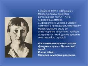 5 февраля 1936 г. в Воронеж к Мандельштамам приехала долгожданная гостья – Ан