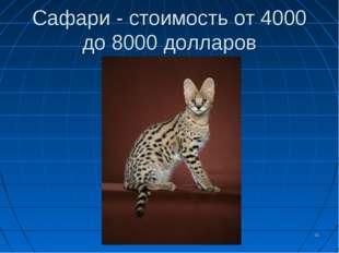 Сафари - стоимость от 4000 до 8000 долларов *