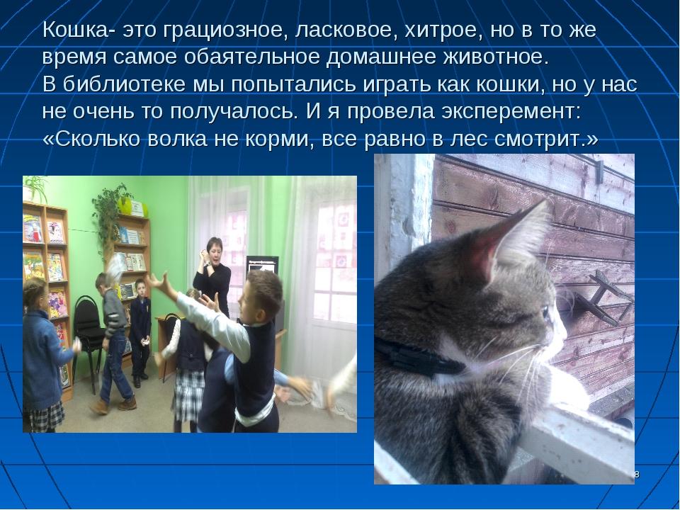 Кошка- это грациозное, ласковое, хитрое, но в то же время самое обаятельное д...