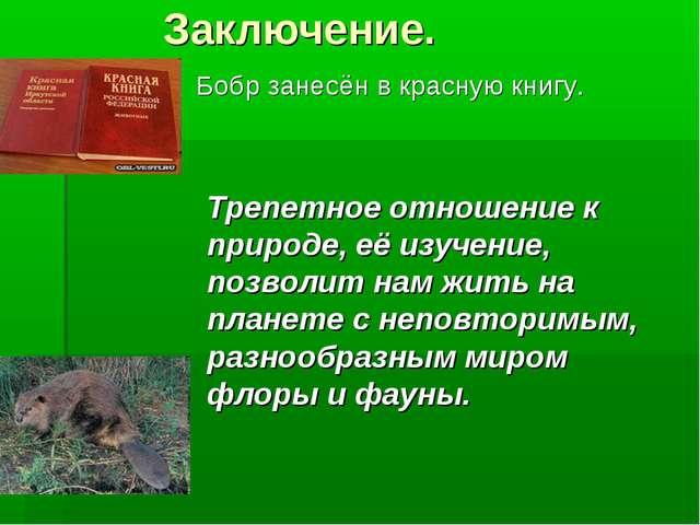 Заключение. Бобр занесён в красную книгу. Трепетное отношение к природе, её...