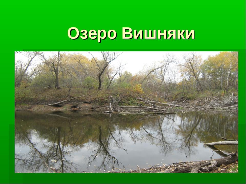 Озеро Вишняки