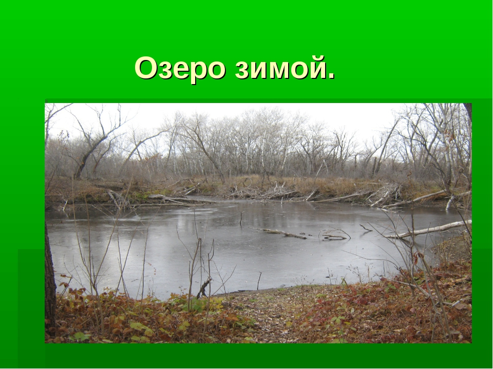 Озеро зимой.