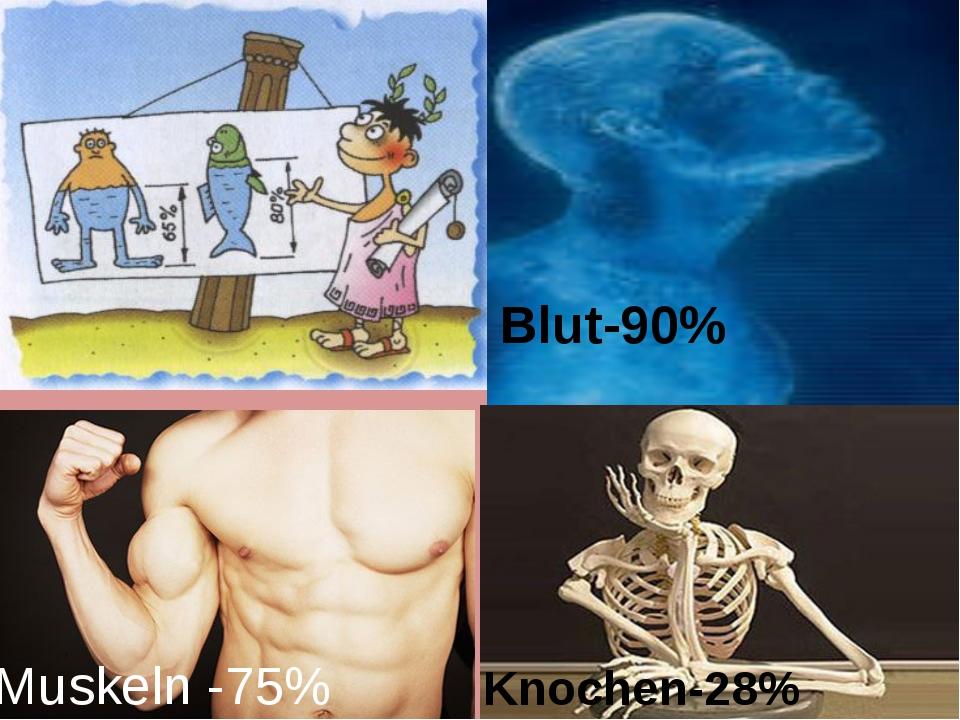 Blut-90% Muskeln -75% Knochen-28%