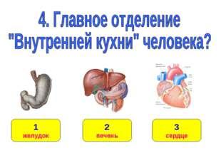 1 желудок 3 сердце 2 печень