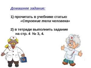 Домашнее задание: 1) прочитать в учебнике статью «Строение тела человека» 2)