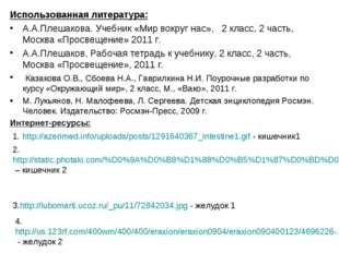 Использованная литература: А.А.Плешакова. Учебник «Мир вокруг нас», 2 класс,