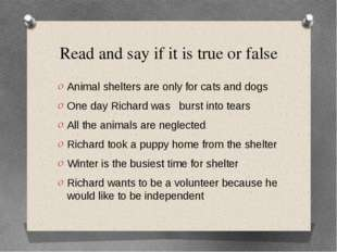 Read and say if it is true or false Animal shelters are only for cats and dog