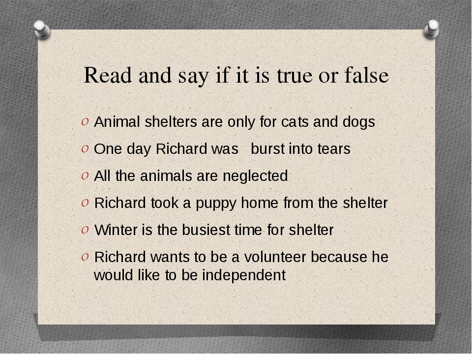 Read and say if it is true or false Animal shelters are only for cats and dog...
