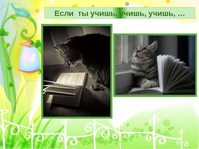 Если ты учишь, учишь, учишь, …
