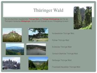Thüringer Wald Die naturräumlichen Haupteinheiten Thüringer Wald und Thüringe
