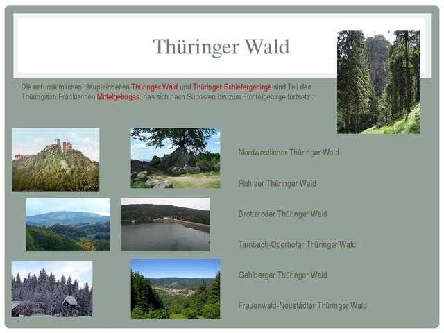 Thüringer Wald Die naturräumlichen Haupteinheiten Thüringer Wald und Thüringe...