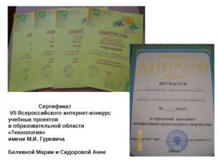 Сертификат VII Всероссийского интернет-конкурс учебных проектов в образовате