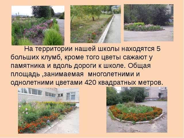 На территории нашей школы находятся 5 больших клумб, кроме того цветы сажают...