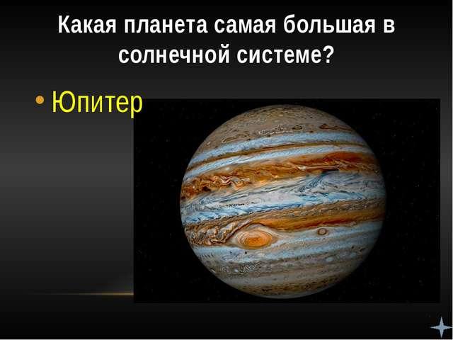 На какой планете самые высокие горы? На Марсе