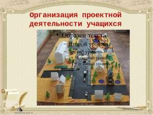 Организация проектной деятельности учащихся