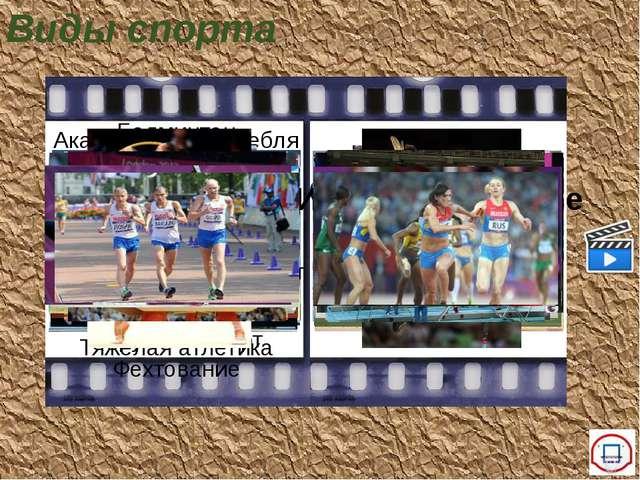 Олимпийские виды спорта Виды спорта Водные виды спорта Академическая гребля В...