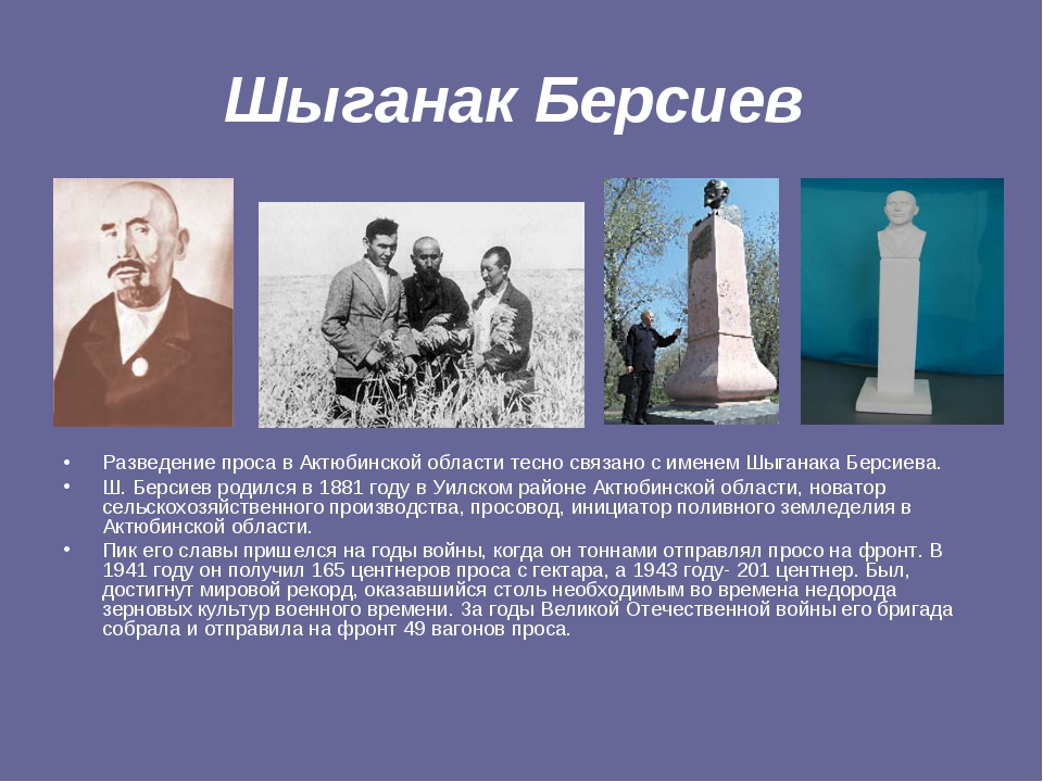 Шыганак Берсиев Разведение проса в Актюбинской области тесно связано с именем...