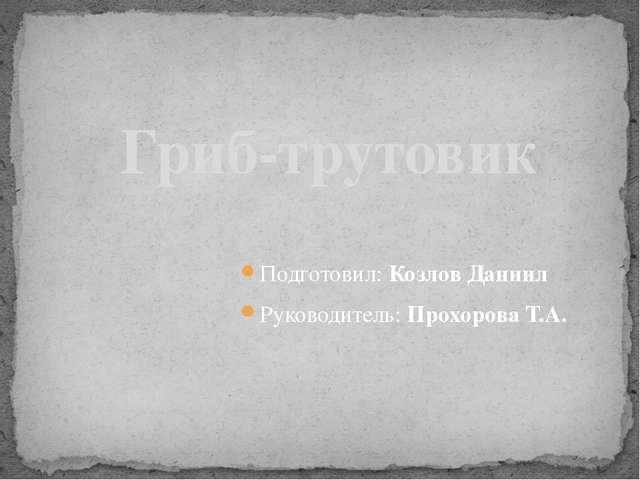 Подготовил: Козлов Даниил Руководитель: Прохорова Т.А. Гриб-трутовик