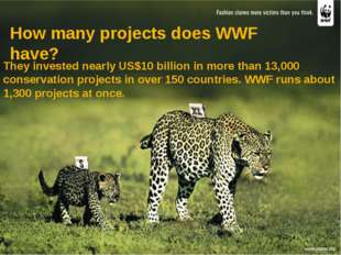 They invested nearly US$10 billion in more than 13,000 conservation projects