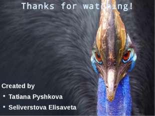 Thanks for watching! Created by Tatiana Pyshkova Seliverstova Elisaveta