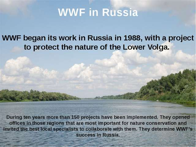 WWF began its work in Russia in 1988, with a project to protect the nature of...