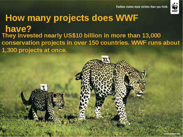 They invested nearly US$10 billion in more than 13,000 conservation projects...